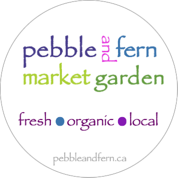 welcome to pebble and fern