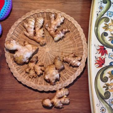 Ginger Hands